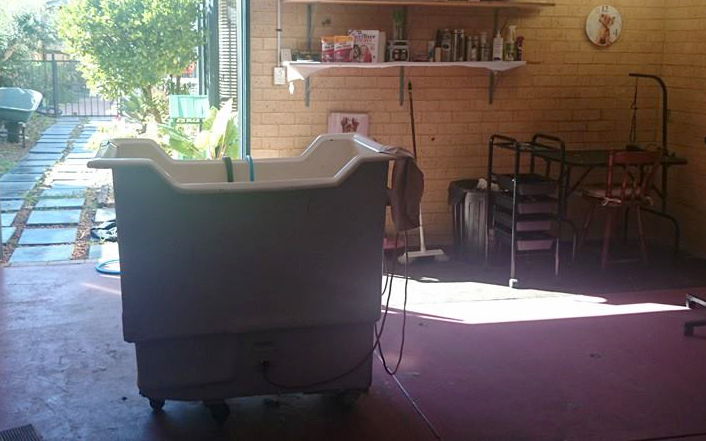 Pampered Pooches Mobile Dog Grooming